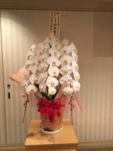 モダン お花