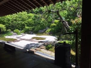 浄妙寺 庭
